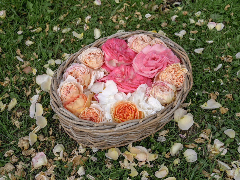 Sparkling Rose Petal Wine